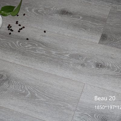 Beau 20